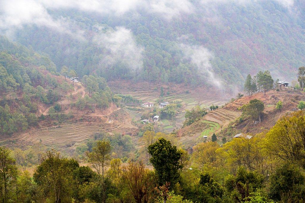 Landschaft, Punakha-Tal, Bhutan ∙ Landscape, Punakha Valley, Bhutan