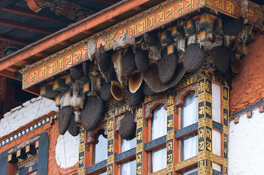 Bienennester ∙ Beehives, Punakha Dzong, Bhutan